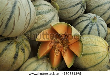 Cantaloupe melons at a farmers narket in France