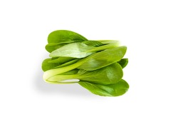 Cantonese lettuce organic diet vegetables isolated white background
