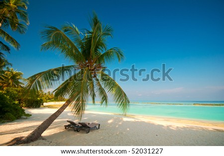 canvas chairs at tropical beach - stock photo