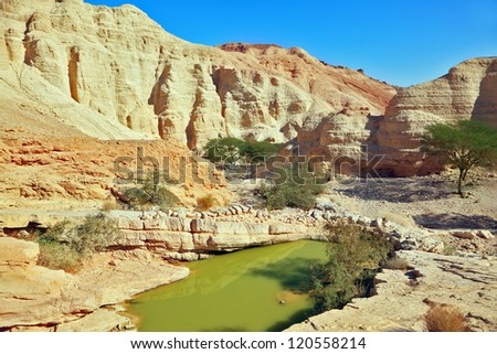 Canyon in ancient mountains at the Dead Sea. A big pool with the remains of green water