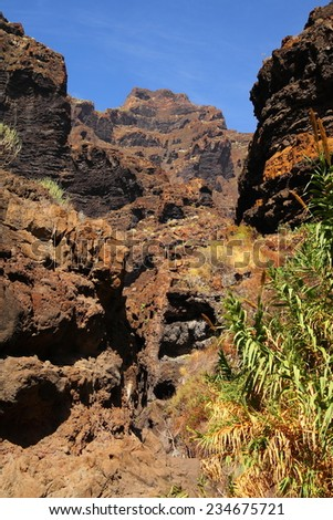 canyon Masca at Tenerife island #234675721