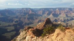 canyon view in grandcanyon southrim