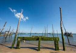 Cap Ferret (Arcachon Bay, France), view of the bay