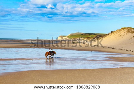 Cap Gris-nez cliffs in north of France seen from Wissant beach Foto stock ©