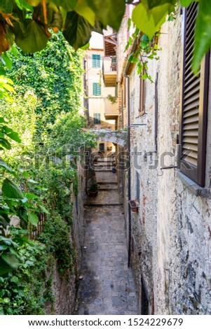 Capalbio, Grosseto, Tuscany, Italy: historic village in Maremma. Typical alley