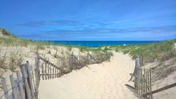 Cape cod beach with fenced pathway