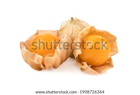 Cape Gooseberry isolated on white background Stock photo ©