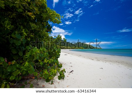 Cape Tribulation, Tropical North Queensland, Australia