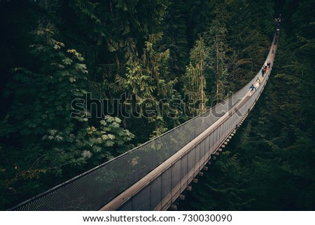 Capilano Suspension Bridge in Vancouver, Canada. #730030090