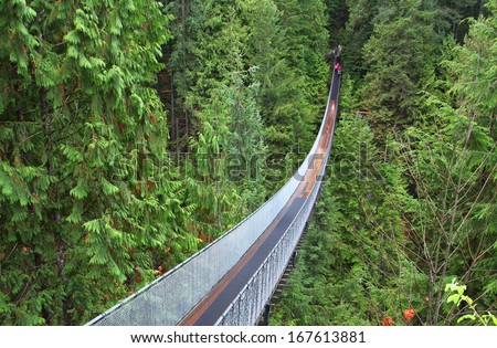 Capilano suspension bridge near Vancouver in Canada #167613881