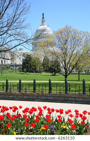Capital Hill with Red Flowers Foreground