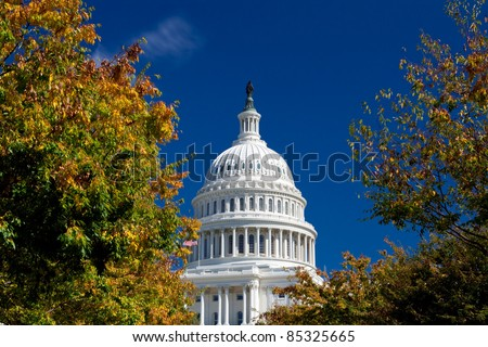 Capitol Building Framed Autumn Foliage Washington DC, Polarized Filter