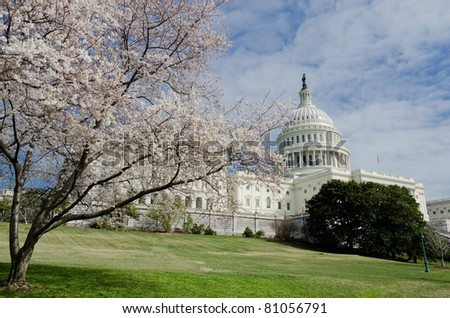 Capitol building in spring - Washington DC