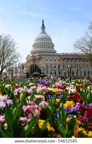 Capitol Hill Building with flowers in Washington DC.