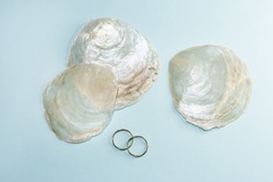 Capiz shells (placuna placenta) are a material used in miscellaneous items, interior design and decoration.