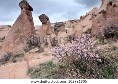 Cappadocia lies in eastern Anatolia in the center of what is now Turkey. Cappadocia landscape. High resolution image