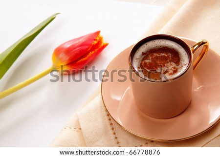 Cappuccino or latte coffee in a cup with frothed milk and spring tulip flower on a white background