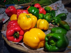 Capsicum for sale in street marker, Delhi, India. The bell pepper is a cultivar group of the species Capsicum annuum. Capsicum are available in red, yellow orange also.