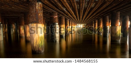 Captured below the Princes Pier at high tide, Port Melbourne. The image highlights the old pylons that lie beneath the new concrete structure that was part of the pier's restoration. #1484568155