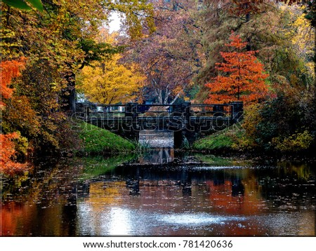 Captured one Autumn day near Boston in an arboretum. Abundant foliage reflects in still pools near a stone bridge.