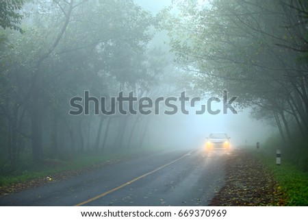 Car driving, Foggy road in forest #669370969