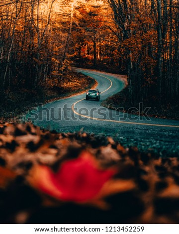 CAR DRIVING ON WINDING ROAD IN AUTUMN/FALL - Beautiful warm seasonal scene of car driving along curved back country road at sunrise. Exploring and travelling Canadian countryside. Ontario, Canada.
