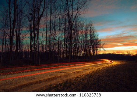 Car light trails by the forest