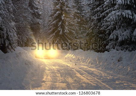 Stock Photo Car lights at nighttime in pine forest with lost of snow