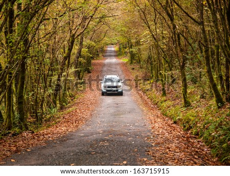 Car on a road in the forest in autumn. #163715915