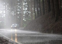 Car proceeds with the headlights on in a road in the woods in the rain.