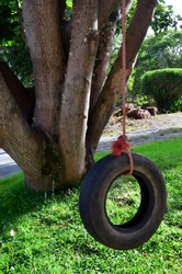 Car tire used as a swing on a tree in the garden. Concept photo of childhood, nostalgia, memory , past, life, retro, vintage, home sweet home.