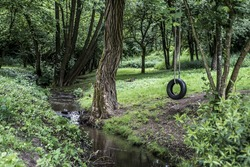 Car tire used as swing on tree forest near creek stream Concept photo of childhood nostalgia memory retro vintage
