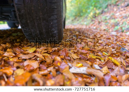 Car tires in autumn on wet leaves #727751716