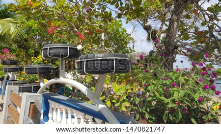 Car tires used as plant pots n Isla Taboga, Panama, providing a nice floral decoration to the main pedestrian area on this touristy island. Foto stock ©