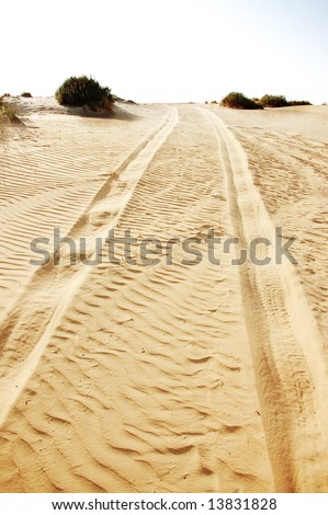 car tracks in sand beach