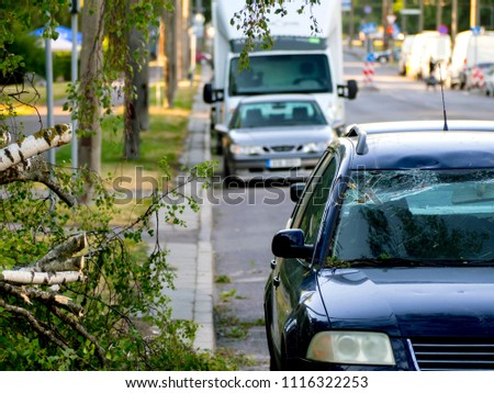 Car trapped under fallen tree after wind storm on June, 2018 in Tallinn city, Estonia. broken windshield. The concept of an emergency situation #1116322253