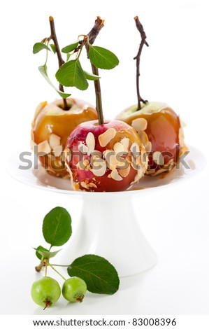 Caramel apples with nut coating on a wooden stick
