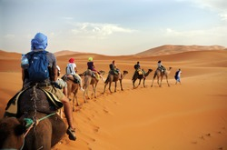 Caravan going through the sand dunes in the Sahara Desert, Morocco - Merzuga - tourist visit the desert  on camels during the holidays - adventure and freedom during a trip , safari - organized travel