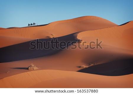 Caravan in the Sahara, Caravan, Desert, Dunes, Sand, Camels, Morocco, Africa