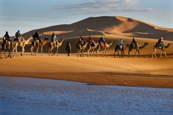 Caravan of tourists passing desert lake on camels during their lifetime adventure trip