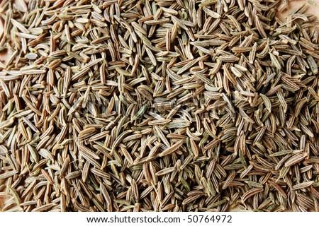 Caraway seeds norsk