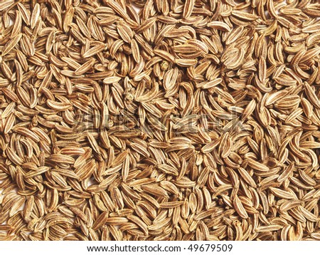 Caraway seeds (fruits) close up, can be used as a  background