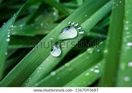 carbon footprint made of drop of water