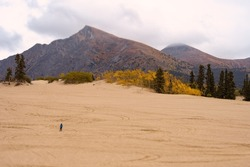 Carcross sand dunes. Desert landscape with tilt-shift miniature effect; perspective desert landscape in the fall with mountains in the background.