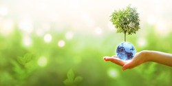 Card for World Earth Day or Arbor Day. Blue glass globe ball and tree in human hand on blurred green background. Saving environment, save, protect clean planet and ecology, sustainable lifestyle.