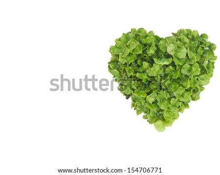 card with heart shape
