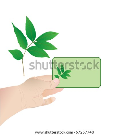 Card with leaf in a hand of the person