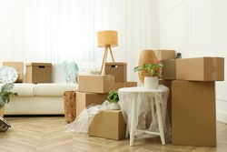 Cardboard boxes, potted plants and household stuff indoors. Moving day