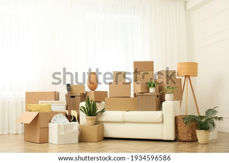 Cardboard boxes, potted plants and household stuff indoors. Moving day Stock photo ©