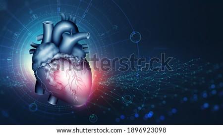 Cardiac technology, innovations in medicine and transplantology. Cardio training and modern technologies. Human heart anatomy 3d illustration Stockfoto ©